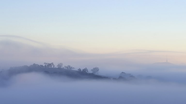 A reader captured this misty morning shot for the <i>Canberra Times'</i> Winter Photo Competition.