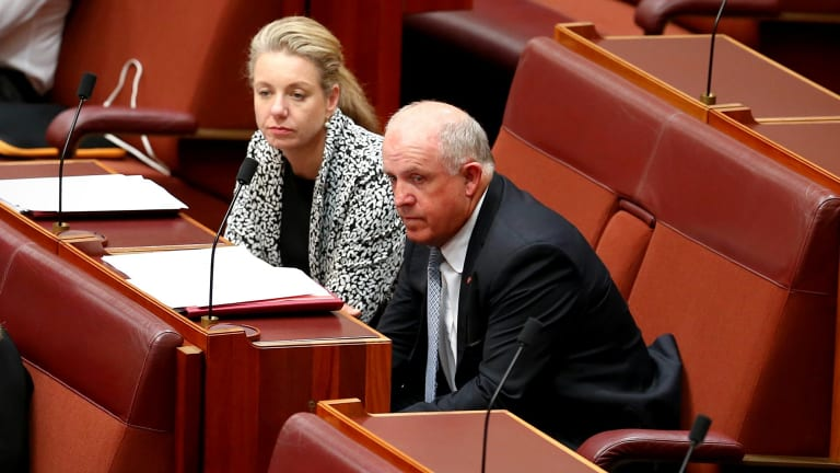 Senators Bridget McKenzie and John Williams crossed the floor and effectively voted for the gun.