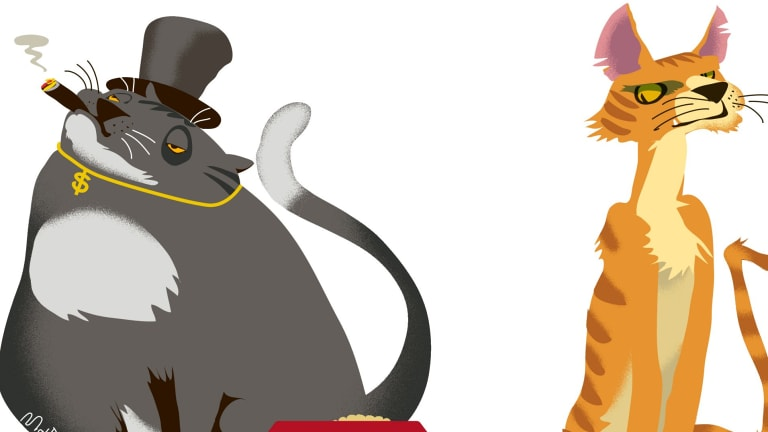 """The big four banks and AMP represent nearly three-quarters of the 628 """"Fat Cat Funds"""". Illustration: Matt Davidson"""