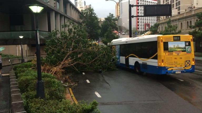 A violent hail storm lashed Brisbane in November, 2014.