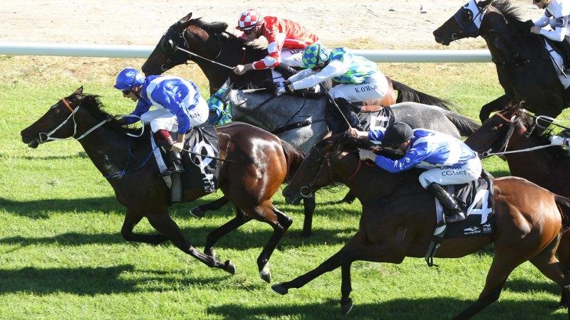 Randwick races: Kris Lees looks to close best season with