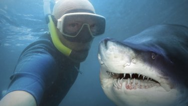 Data from 2014, shows more people were killed taking selfies than in shark attacks.