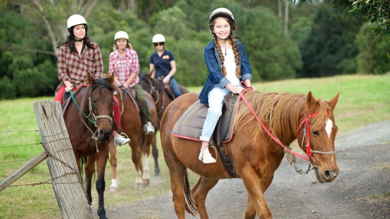 Saddle up: Own a horse for a day at the Sydney Trail Riding Centre.