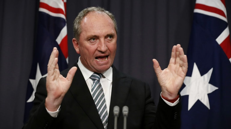 Nationals leader Barnaby Joyce was behind the APVMA's controversial forced move.