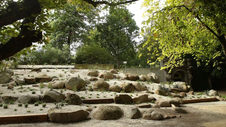 The recently restored Ellis Stones garden at Melbourne University.