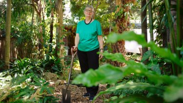 Anne Ashford is grateful that she never went through with arthroscopic knee surgery to treat her osteoarthritis pain.