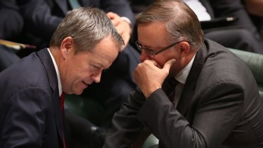 Albanese with Opposition Leader Bill Shorten in Parliament House in May.