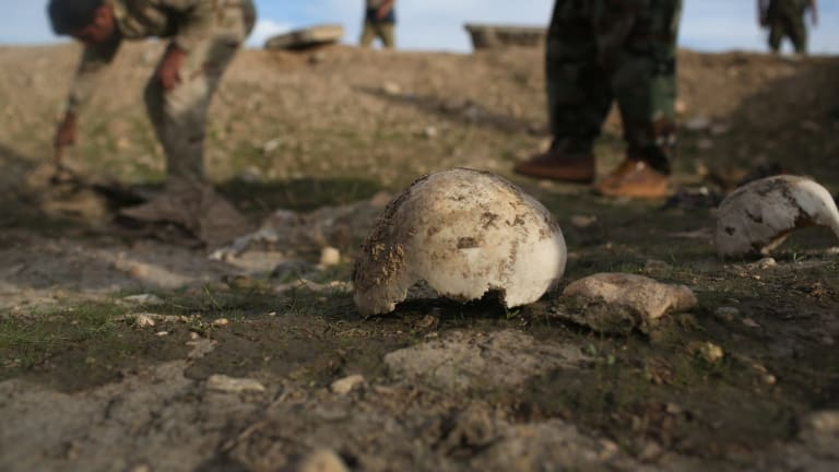 Iraqi Kurdish Peshmerga forces show what they say is a mass grave of more than 50 Yazidis in Sinjar.