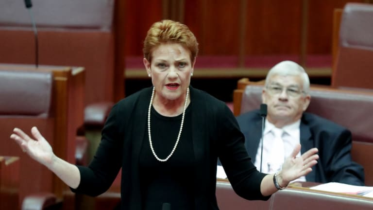 "Pauline Hanson showed her enthusiasm for Russian leader Vladimir Putin and her disdain for Muslims and the ""no jab, no pay"" scheme on the ABC's <i>Insiders</i>."