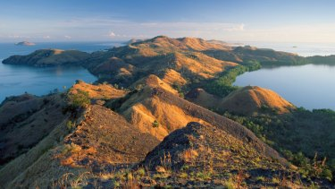 The Indonesian island of Flores.