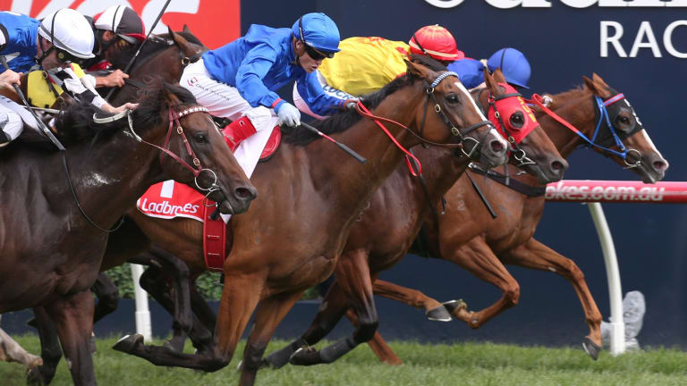Jockey Craig Williams (blue top and cap) rides Hartnell to win the Orr Stakes at Caulfield.