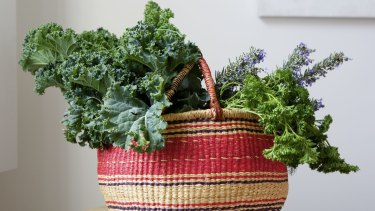 Kale and other leafy greens have a secret ingredient your gut bacteria will love: sugar.