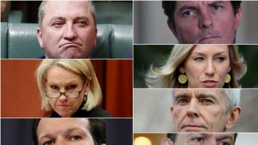 The High Court will consider the eligilbility under Section 44 of the Constition for politicians (anti-clockwise from top left) Barnaby Joyce, Fiona Nash, Matt Canavan, Nick Xenophon, Malcolm Roberts, Larissa Waters and Scott Ludlam. Montage created 9 October 2017.