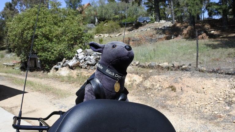 Canberra Depression Black Dog