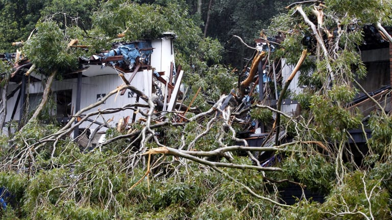 The house was split in half by the fallen tree early on Tuesday morning.