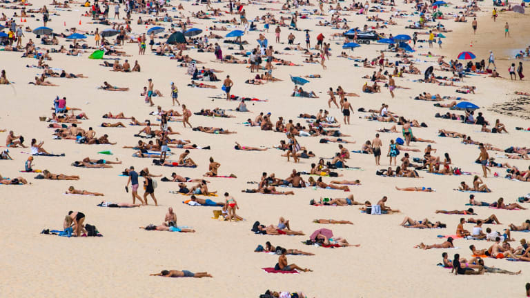 Sydney will sweat through a scorching day on Wednesday.