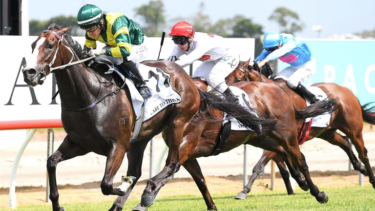 Easy does it: Jeff Lloyd rides Care To Think to victory in the Magic Millions Cup.
