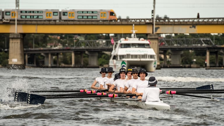The stretch of the Parramatta River around Rhodes is already congested - and rowers fear the new wharf will make it too dangerous for rowers to use.