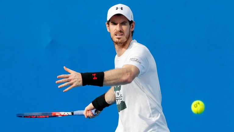 Open doubts: Three-time slam winner Andy Murray.
