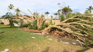 The trail of destruction through Bill Byast's backyard.