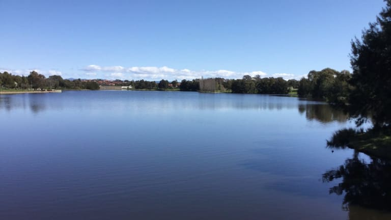 The placid waters of Yerrabi Ponds in Gungahlin.