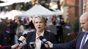 "Labor deputy leader Tanya Plibersek, pictured in her electorate on Saturday, said Mr Shorten had run ""a great campaign."""