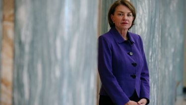 Australian Bankers Association chief executive Anna Bligh blamed the levy for a slump in bank shares.