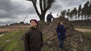 Helen Lewers, Gavin Jamieson and Kate Vivian next to a tree which has been turned into mulch during construction.