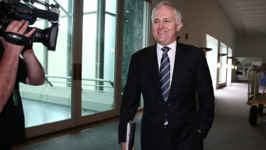 Preferred Liberal leader ... Communications Minister Malcolm Turnbull.