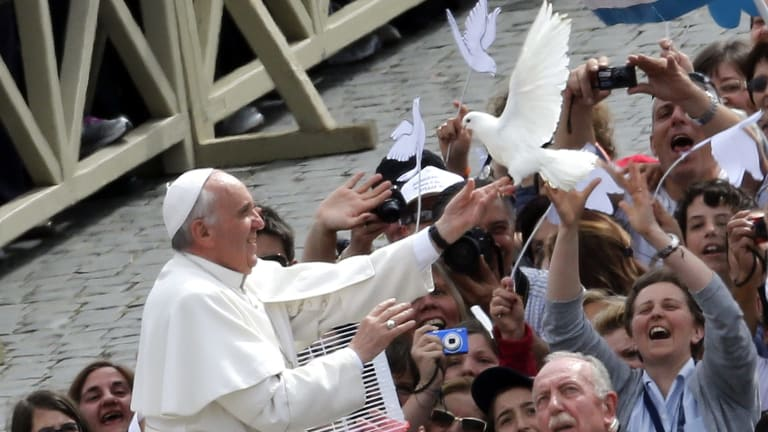 Taking a stand on the environment ... Pope Francis holds a dove before his general audience at San Peter's Square at the Vatican on Wednesday.