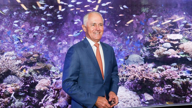 Prime Minister Malcolm Turnbull visits the Australian Institute of Marine Science (AIMS) to unveil the 'rescue plan' for the reef.