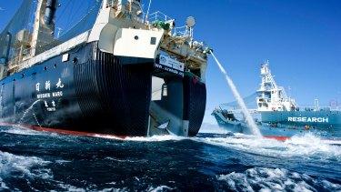 Japanese whaling harpoon ship the Yushin Maru 2 offloads a minke whale onto the Japanese whaling factory ship the Nisshin Maru in the Southern Ocean, Antarctica.