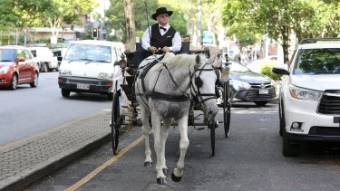 Uber Queensland use a horse and cart to deleiver 15,584 letters to the Premier's office on George Street.