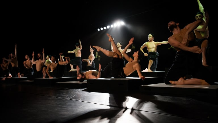 Sydney Dance Company returns to The Canberra Theatre Centre with <i>CounterMove</I>, a two-part program including Alexander Ekman's <i>Cacti</I>.