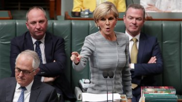"Foreign Minister Julie Bishop is sometimes overlooked, but her confected outrage at Labor over ""Kiwis under the bed"" was a little overcooked."