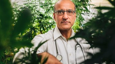 Dr Andrew Katelaris is one of Australia's biggest medicinal cannabis suppliers.