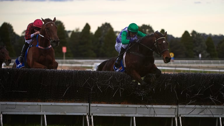 Jockey Richard Cully rides Wells to victory in the Grand National steeplechase at Ballarat