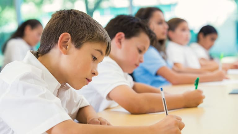 Online NAPLAN tests were supposed to begin this year, but the states and territories pulled out, citing concerns about technological glitches.
