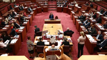 The debate around same-sex marriage has been the cause of much outrage in the Senate this week.