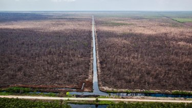 A canal runs through an area cleared for pulp plantation in May 2014. APRIL says it has eliminated deforestation under its new forest management policy.