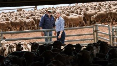 David Bain says his daughter Katherine has always been interested in agriculture.