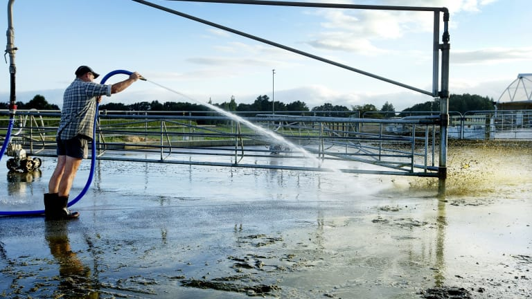 Dairy farming is very water intensive