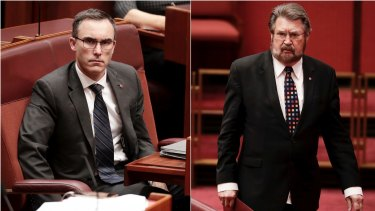 Tim Storer and Derryn Hinch in the Senate today.