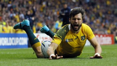 Veteran: Adam Ashley-Cooper's experience will be important for the Wallabies in the Bledisloe Cup series.