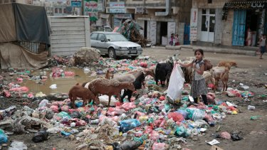 A girl scavenges in a street in Sanaa, Yemen. The UN and international aid groups say the Saudi-led blockade on Yemen has resulted in a lack of food, clean water and basic medical supplies.
