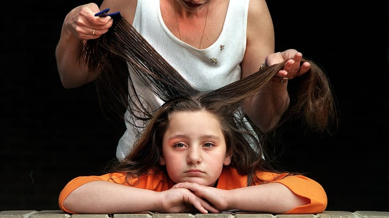 Parents will now have to comb through their kids' hair to get rid of lice because the pests have become immune to common insecticides.