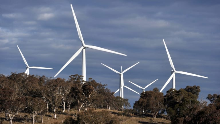 The federal government has ordered the Clean Energy Finance Corporation against investing further in wind energy.