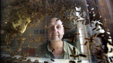 Adrian Dyer examines honeybees at Melbourne University.