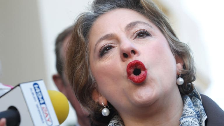 Sophie Mirabella is trying to recapture the seat of Indi at the July 2 election.