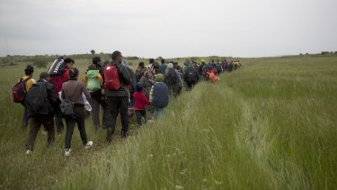 Migrants and refugees who were camped in Idomeni walk through fields in their attempt to cross the Greek-Macedonian border this week.